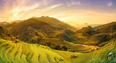 voyager-au-vietnam-prix
